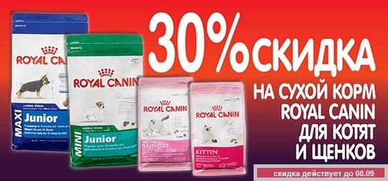 PURINA|Официальный сайт производителя корма для собак и